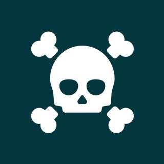 Icon: Pirate Translator